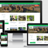 Tour Operators: How can you create a website that attracts bookings